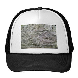 Seamless Rock Texture with moss Hats