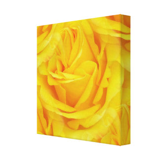Seamless Yellow Rose Of Friendship Canvas Print