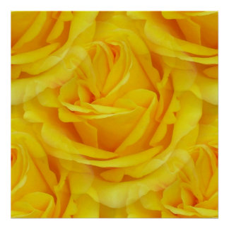 Seamless Yellow Rose Of Friendship Poster