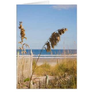Seaoats (Uniola paniculata) and fencing for Card
