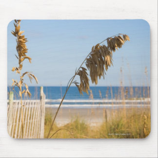 Seaoats (Uniola paniculata) and fencing for Mouse Pad