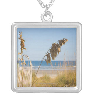 Seaoats (Uniola paniculata) and fencing for Silver Plated Necklace