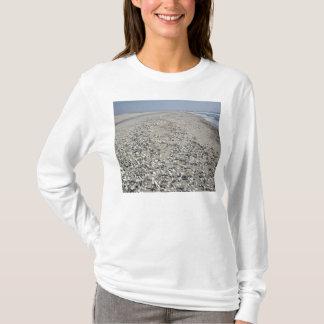 seaofshells T-Shirt