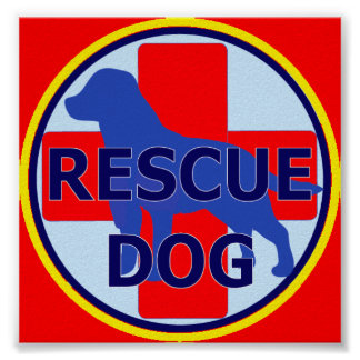 SEARCH AND RECUE DOG SARDA POSTER