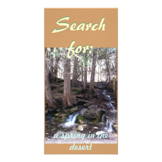 Search Card