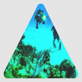 Search for the secret of sea ocean water divers triangle sticker