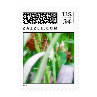 Searching for Faeries Stamp