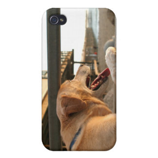 Searching The Ocean iPhone 4 Case