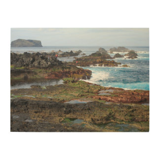 Seascape from Azores islands Wood Wall Art