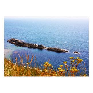 Seascape - Jurassic coast Large Business Card