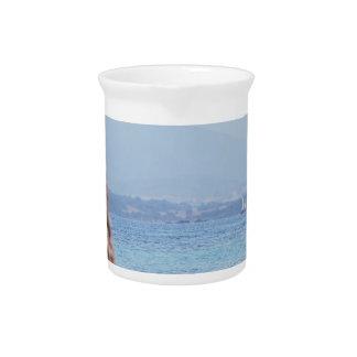 Seascape of Tavolara island on blurred rocks foreg Pitcher