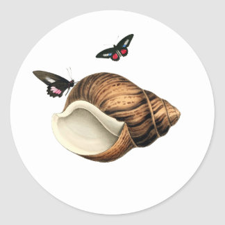 Seashell And Butterflies Classic Round Sticker