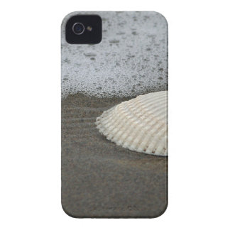 Seashell and Surf iPhone 4 Case-Mate Case