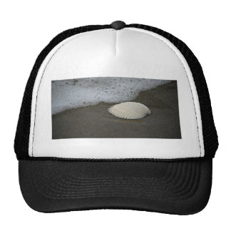 Seashell and Surf Hats