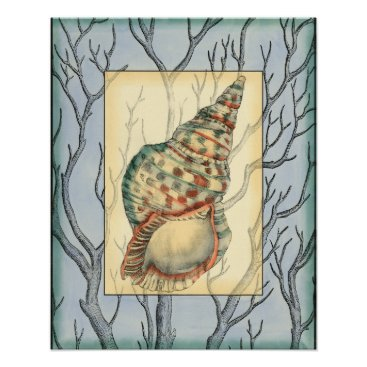 Beach Themed Seashell and Tree Branches Poster