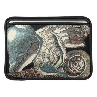 Seashell Anthology MacBook Sleeve