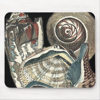 Seashell Anthology Mouse Pad