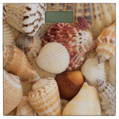 Seashell Arrangement Bathroom Scale at Zazzle