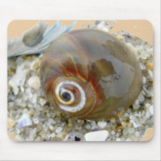 Seashell at Low Tide Coordinating Items Mouse Pad