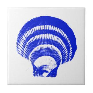 Seashell - azul y blanco de cobalto azulejo cuadrado pequeño