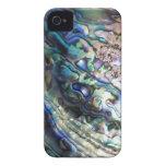 Seashell azulverde del kiwiana del paua del olmo iPhone 4 carcasa