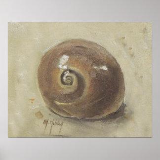 Seashell Beach Moonshell Snail Shell Print