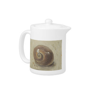 Seashell Beach Moonshell Snail Shell