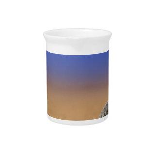 Seashell Beverage Pitcher