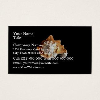 Seashell Business Card