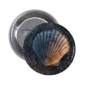Seashell Button