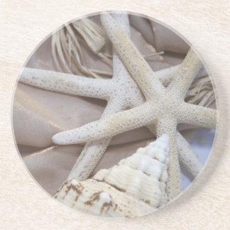 Seashell Coasters