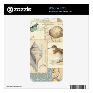 Seashell Collage iPhone 4 Skins