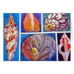 Seashell collage stationery note card