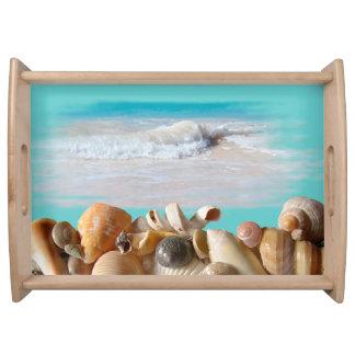 Seashell Collection Coastal Theme Serving Tray