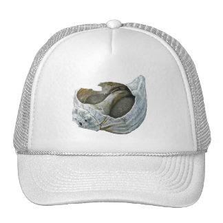 Seashell - Customize Choose your background color Trucker Hat