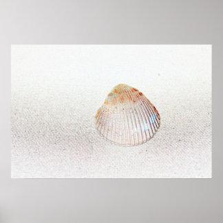 seashell de la luz de la parte posterior de la impresiones