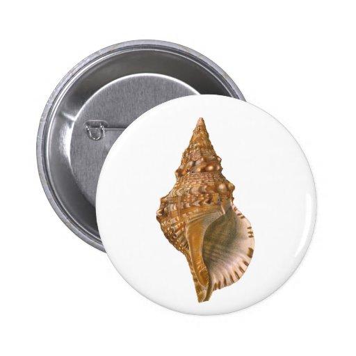 Seashell de Tritón Shell del vintage, animal Pin Redondo De 2 Pulgadas