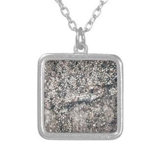 seashell del gris y de la plata joyeria personalizada