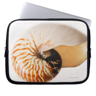 Seashell del nautilus (stenomphalus del nautilus) fundas ordendadores