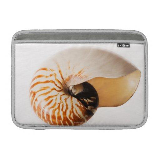 Seashell del nautilus (stenomphalus del nautilus) fundas macbook air