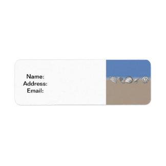 Seashell Drawing Art Label