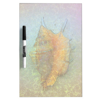 SEASHELL Dry Erase Board