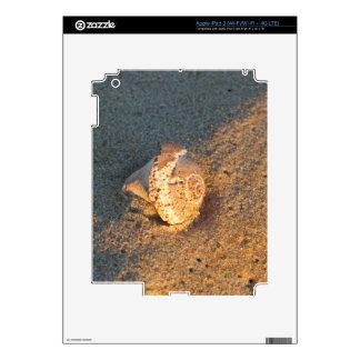 Seashell en la piel del iPad 3 de la arena de la p Pegatina Skin Para iPad 3