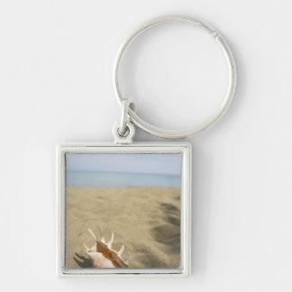 Seashell en la playa arenosa llavero cuadrado plateado