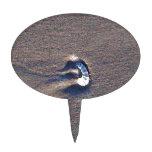 Seashell en la playa de Oregon Figura Para Tarta