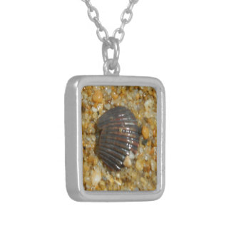 Seashell enterrado colgante personalizado