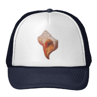 Seashell from Beach for Conch and Welk Shell Colle Trucker Hat