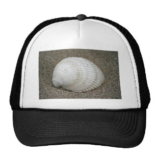 Seashell, Horsfall Beach, Oregon Trucker Hat