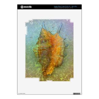 SEASHELL iPad Skin