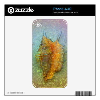 SEASHELL iPhone Skin Skins For iPhone 4S